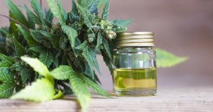 How Long Does CBD Take to Work?
